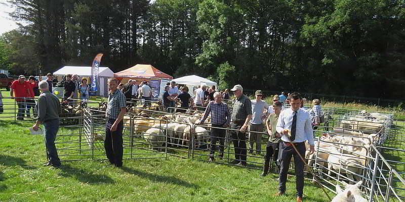 Skye Show visitors